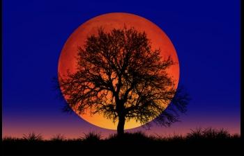 Έκλειψη Σελήνης στους Διδύμους στις 30/11/2020, πως επηρεάζει το ζώδιό σου.